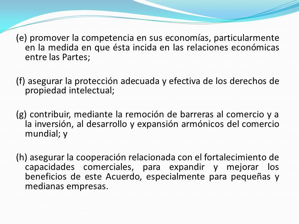 (e) promover la competencia en sus economías, particularmente en la medida en que ésta incida en las relaciones económicas entre las Partes;