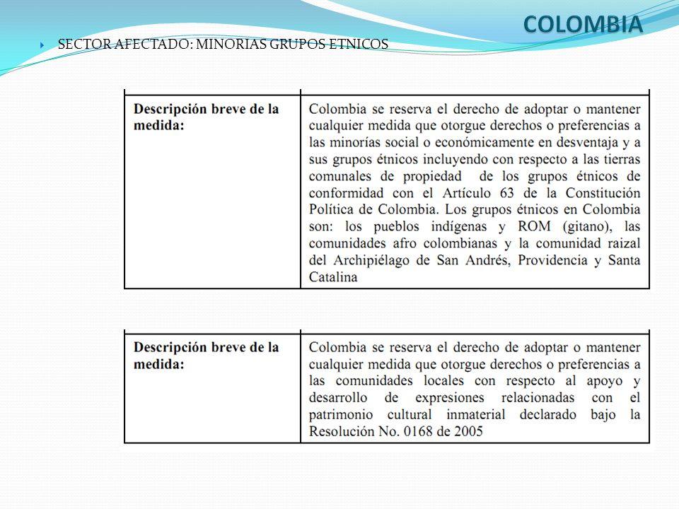 COLOMBIA SECTOR AFECTADO: MINORIAS GRUPOS ETNICOS