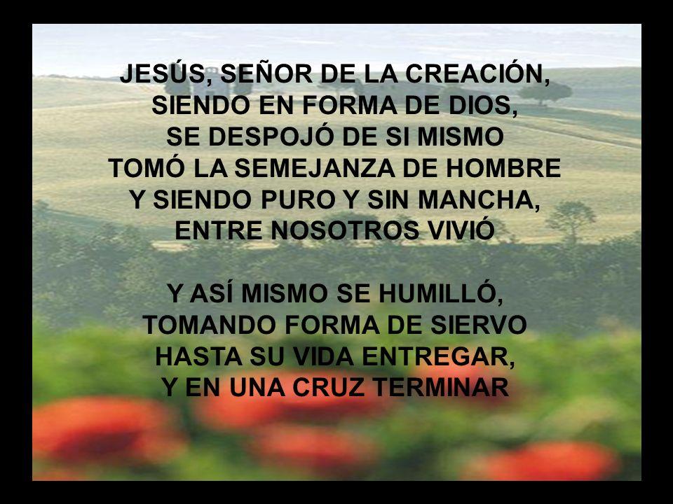 Jesús Señor de la Creación (1)