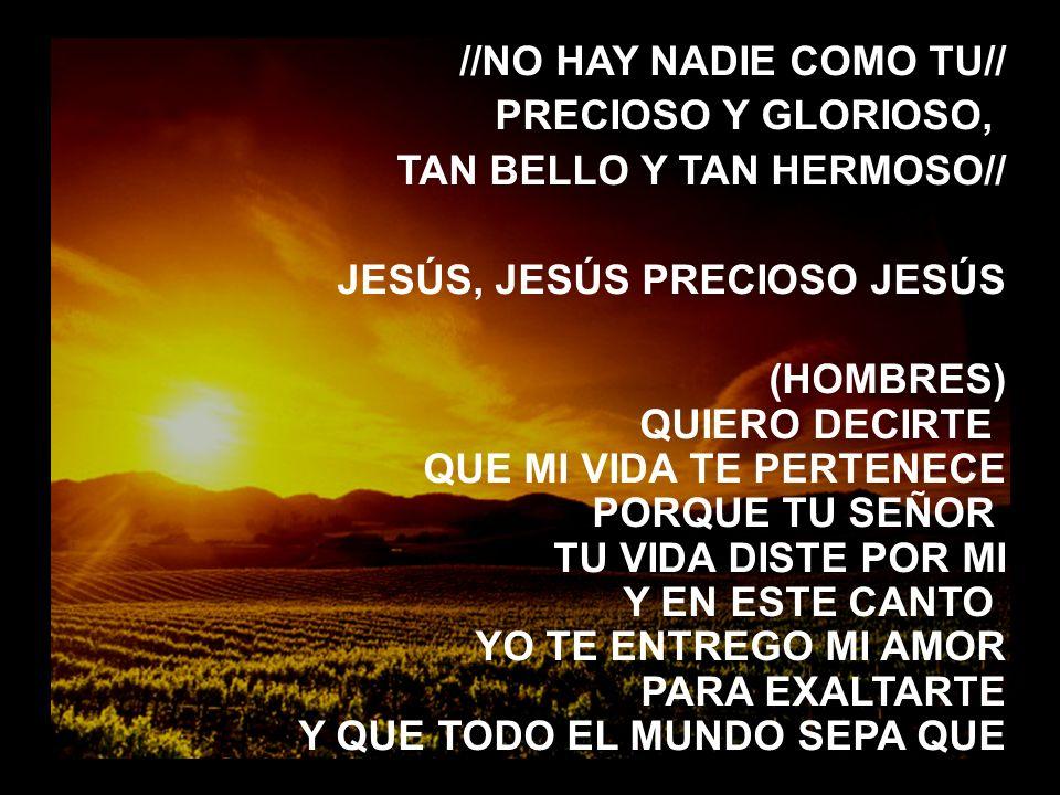 Señor, aqui estamos (2) //NO HAY NADIE COMO TU// PRECIOSO Y GLORIOSO, TAN BELLO Y TAN HERMOSO// JESÚS, JESÚS PRECIOSO JESÚS.