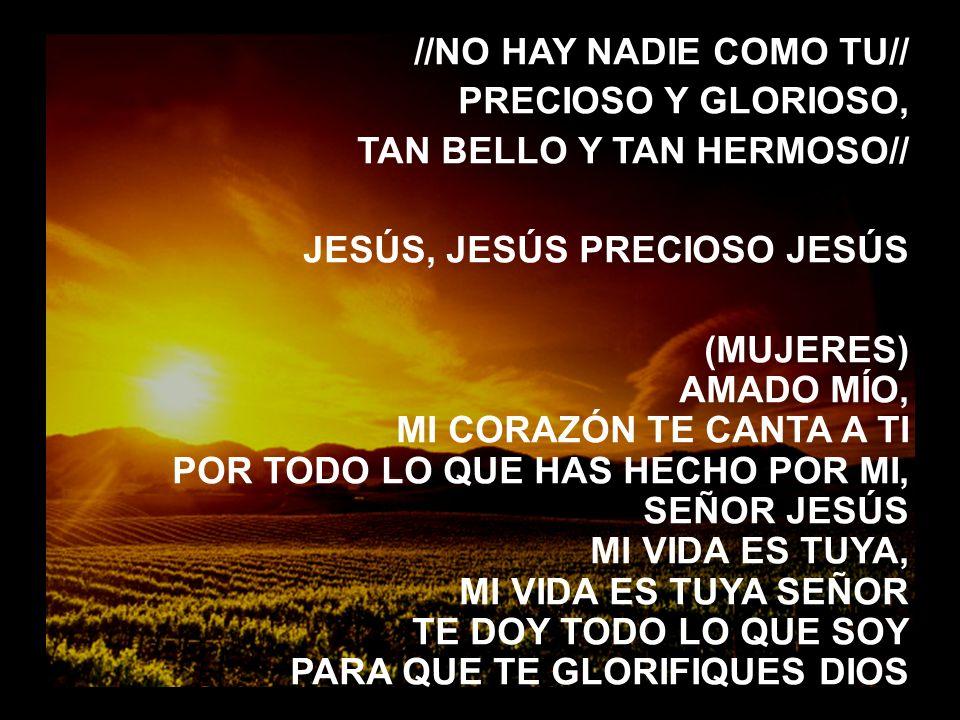 Señor, aqui estamos (3) //NO HAY NADIE COMO TU// PRECIOSO Y GLORIOSO, TAN BELLO Y TAN HERMOSO// JESÚS, JESÚS PRECIOSO JESÚS.