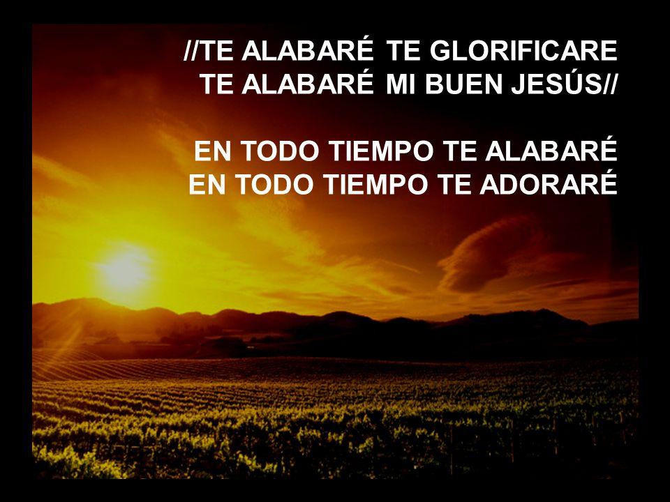 //TE ALABARÉ TE GLORIFICARE TE ALABARÉ MI BUEN JESÚS//