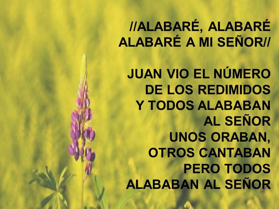 //ALABARÉ, ALABARÉ ALABARÉ A MI SEÑOR// JUAN VIO EL NÚMERO