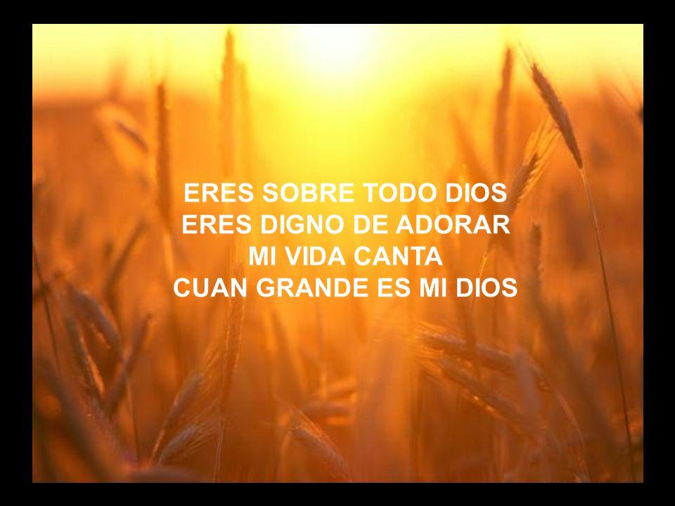 Cuan Grande es (4) ERES SOBRE TODO DIOS ERES DIGNO DE ADORAR