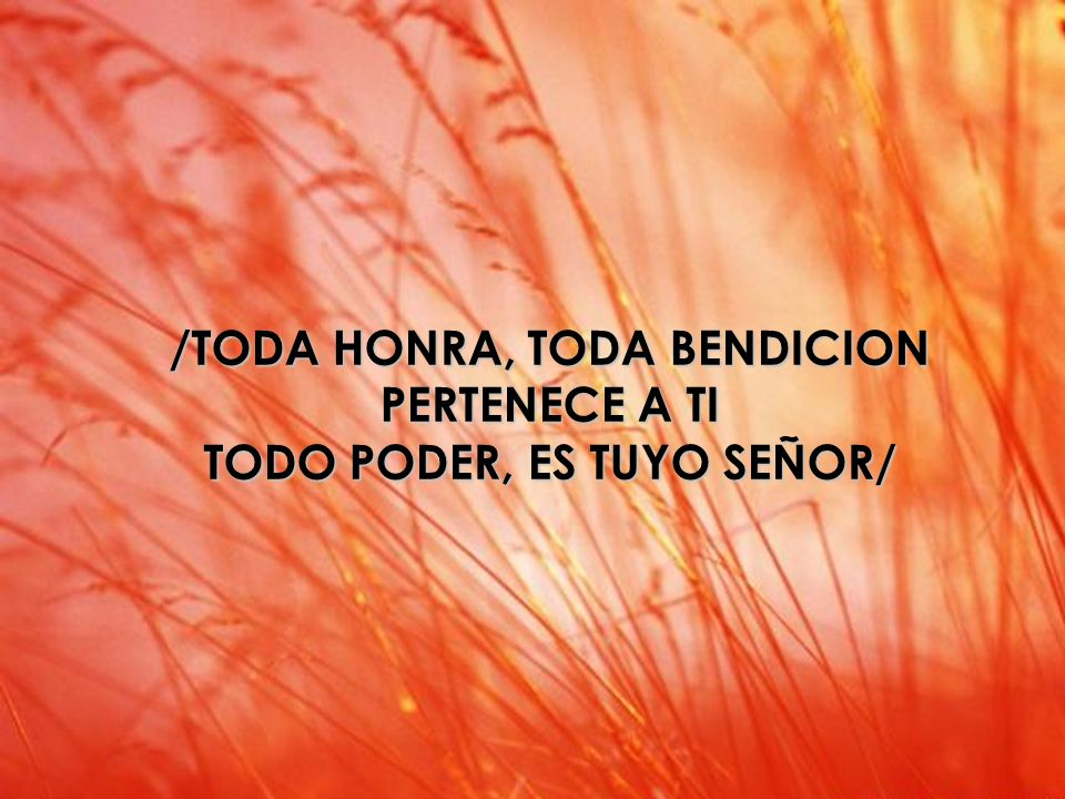 /TODA HONRA, TODA BENDICION PERTENECE A TI TODO PODER, ES TUYO SEÑOR/