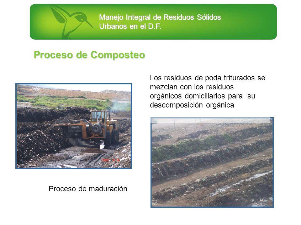 Proceso de Composteo Los residuos de poda triturados se mezclan con los residuos orgánicos domiciliarios para su descomposición orgánica.