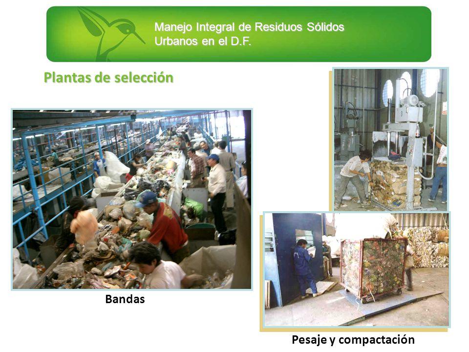 Plantas de selección Bandas Pesaje y compactación