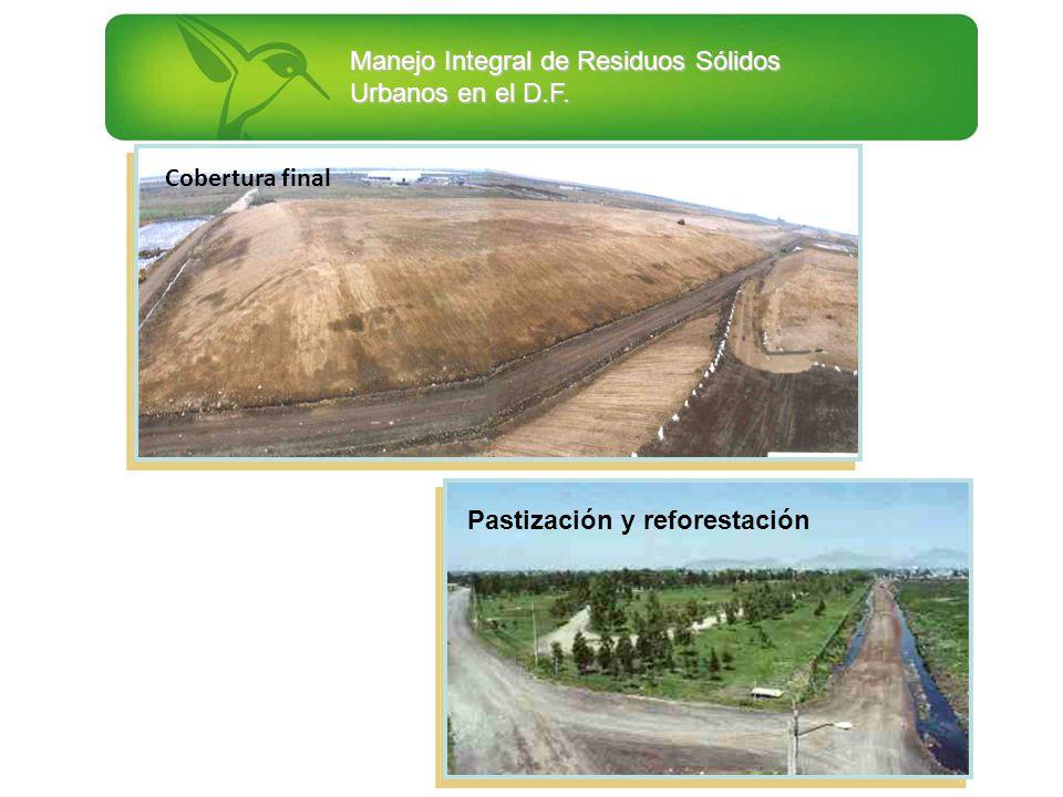 Cobertura final Pastización y reforestación