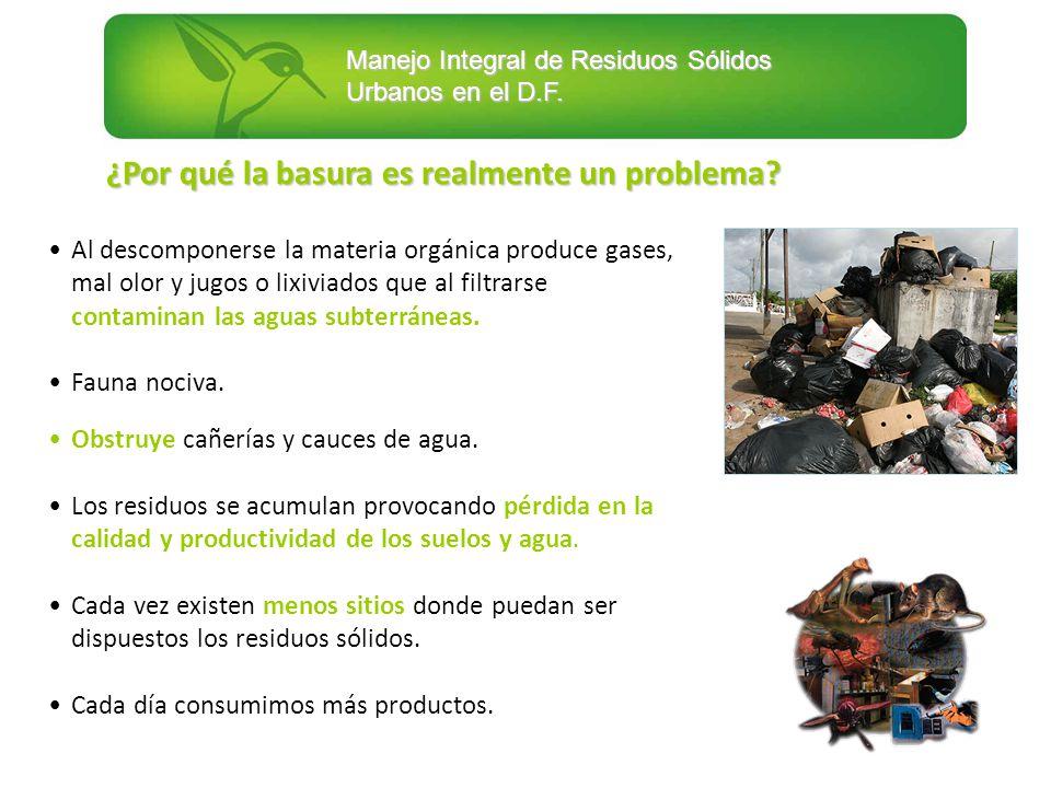 ¿Por qué la basura es realmente un problema