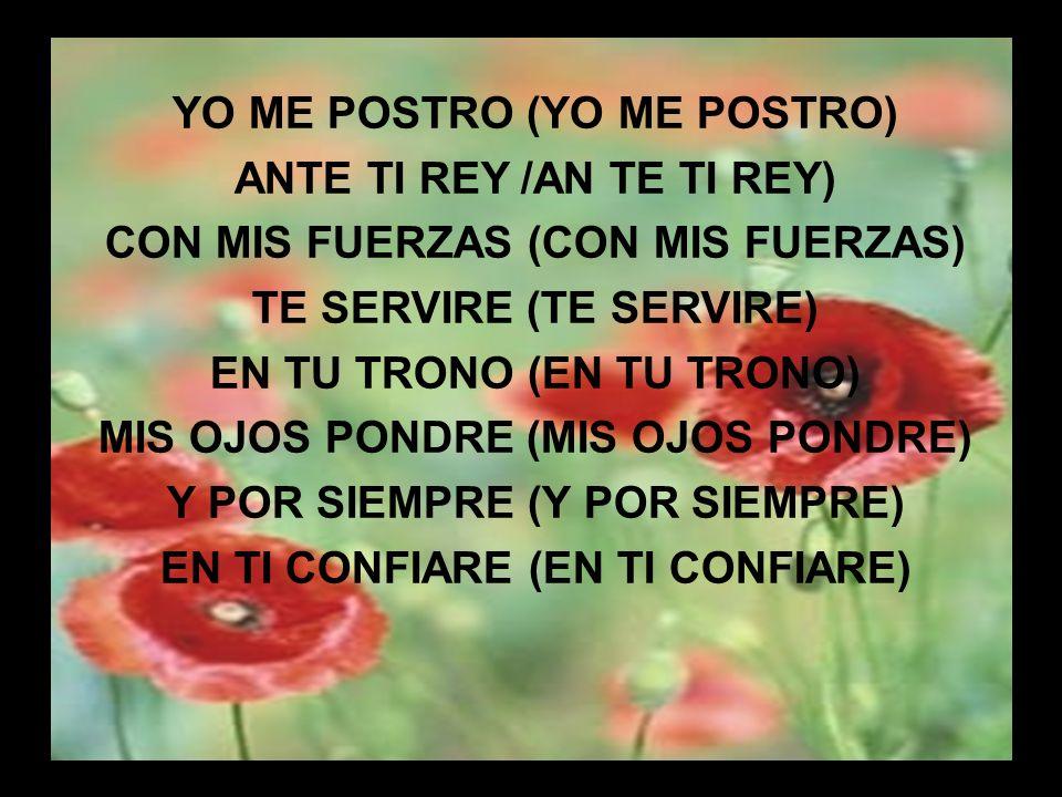 YO ME POSTRO (YO ME POSTRO) ANTE TI REY /AN TE TI REY)