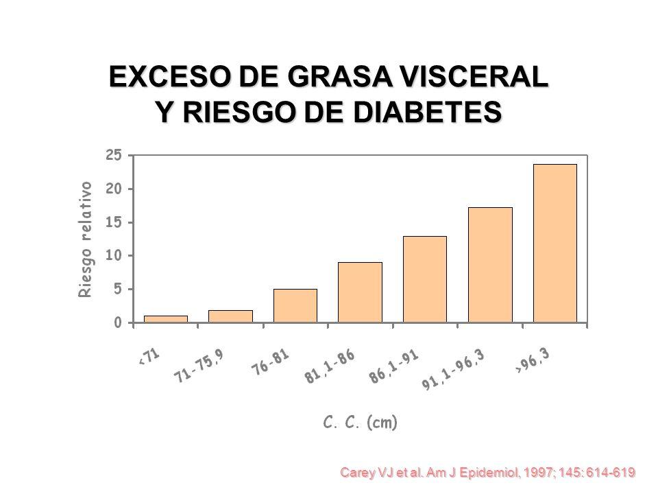 EXCESO DE GRASA VISCERAL Y RIESGO DE DIABETES