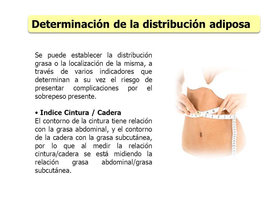 Determinación de la distribución adiposa