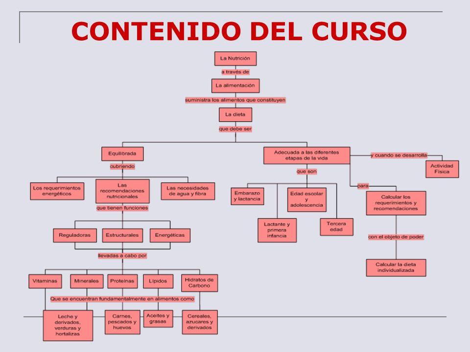 CONTENIDO DEL CURSO