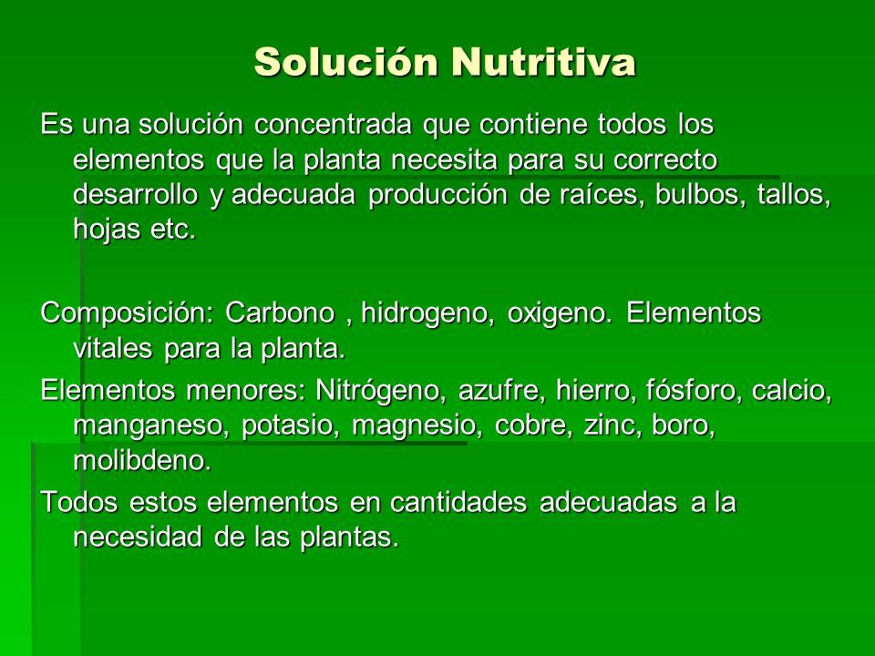 Solución Nutritiva