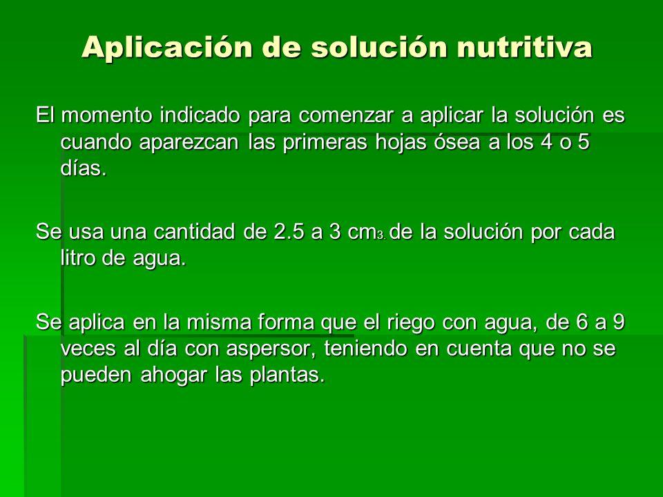 Aplicación de solución nutritiva