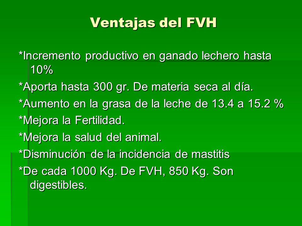 Ventajas del FVH *Incremento productivo en ganado lechero hasta 10%
