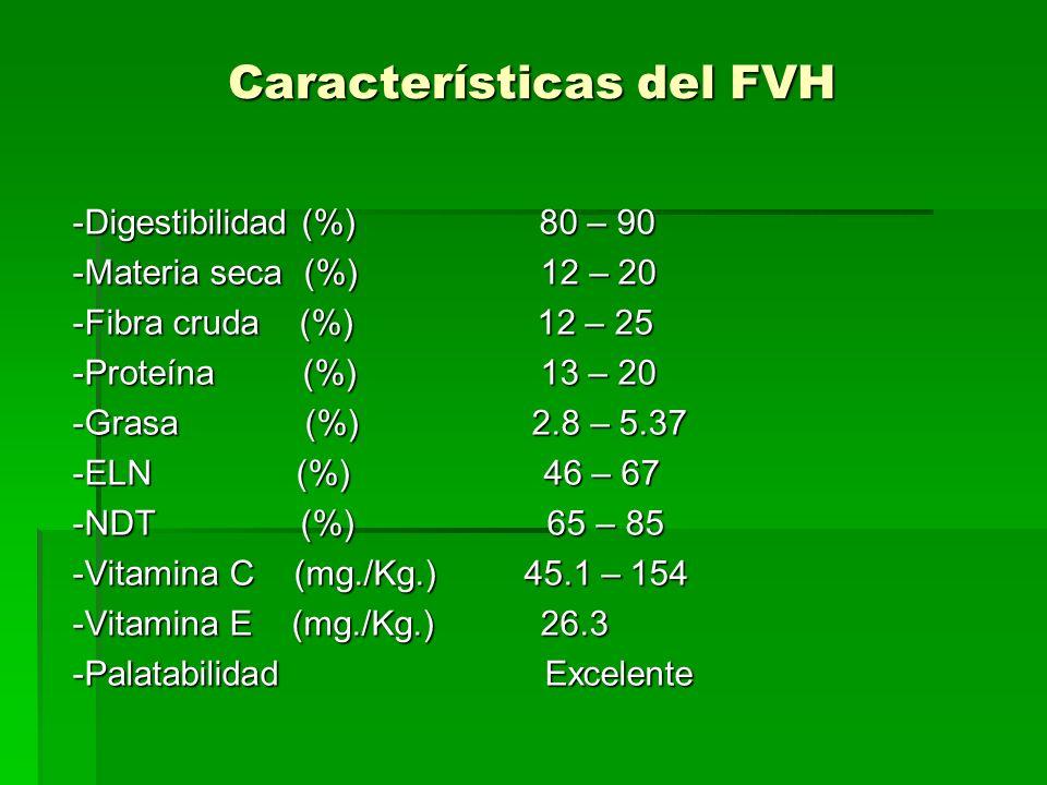 Características del FVH