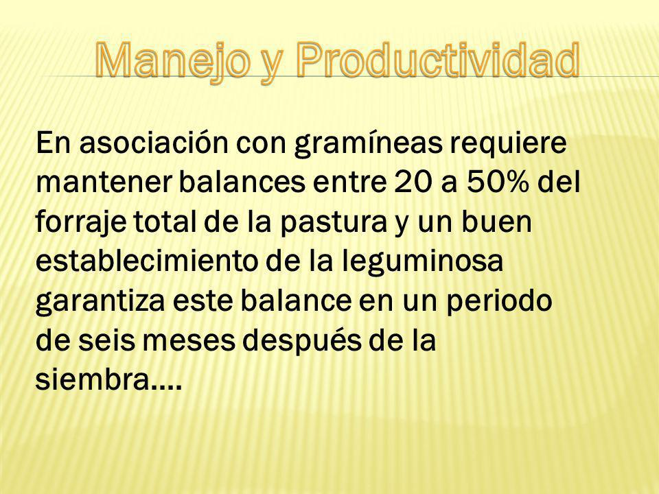 Manejo y Productividad