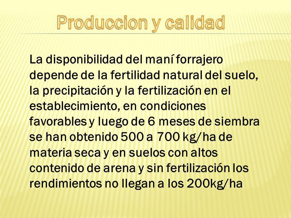 Produccion y calidad