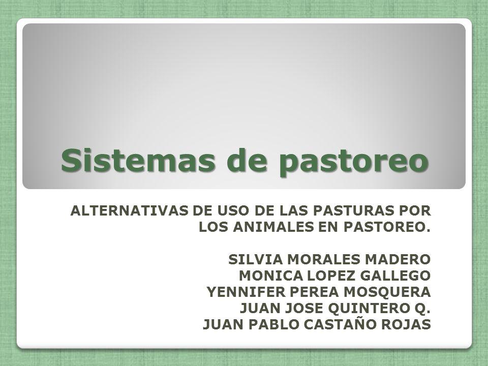 Sistemas de pastoreo ALTERNATIVAS DE USO DE LAS PASTURAS POR LOS ANIMALES EN PASTOREO. SILVIA MORALES MADERO.