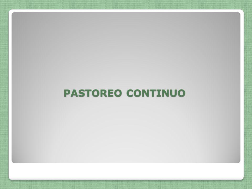 PASTOREO CONTINUO