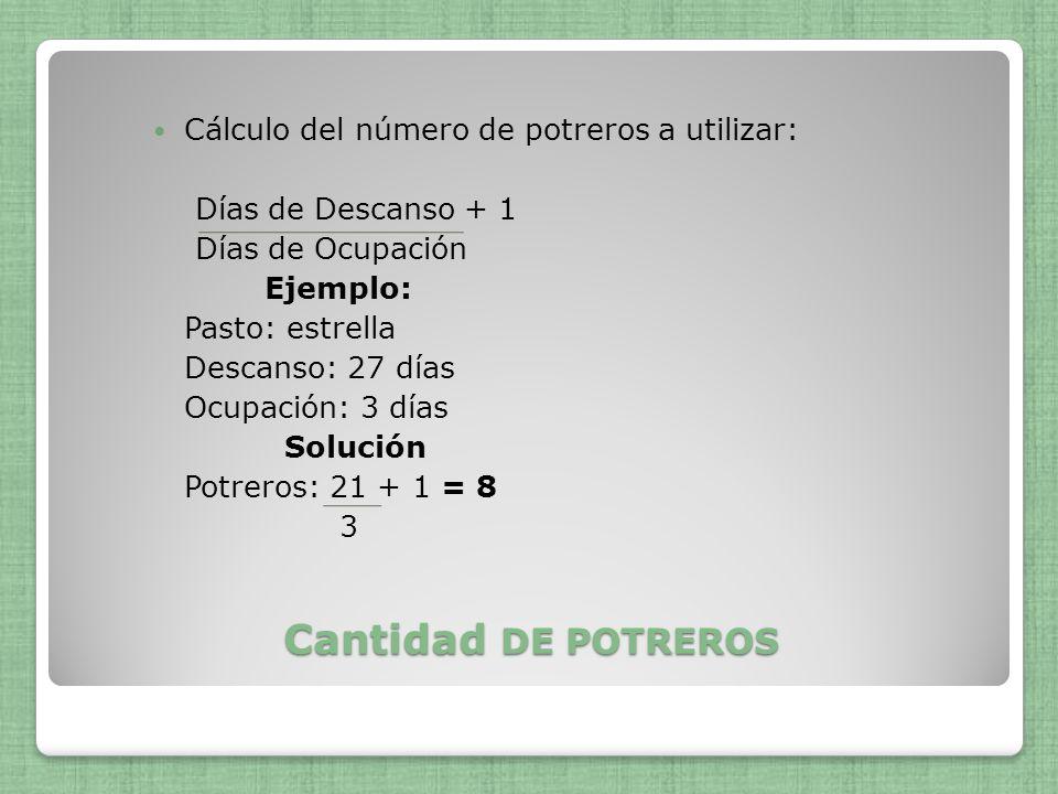Cantidad DE POTREROS Cálculo del número de potreros a utilizar: