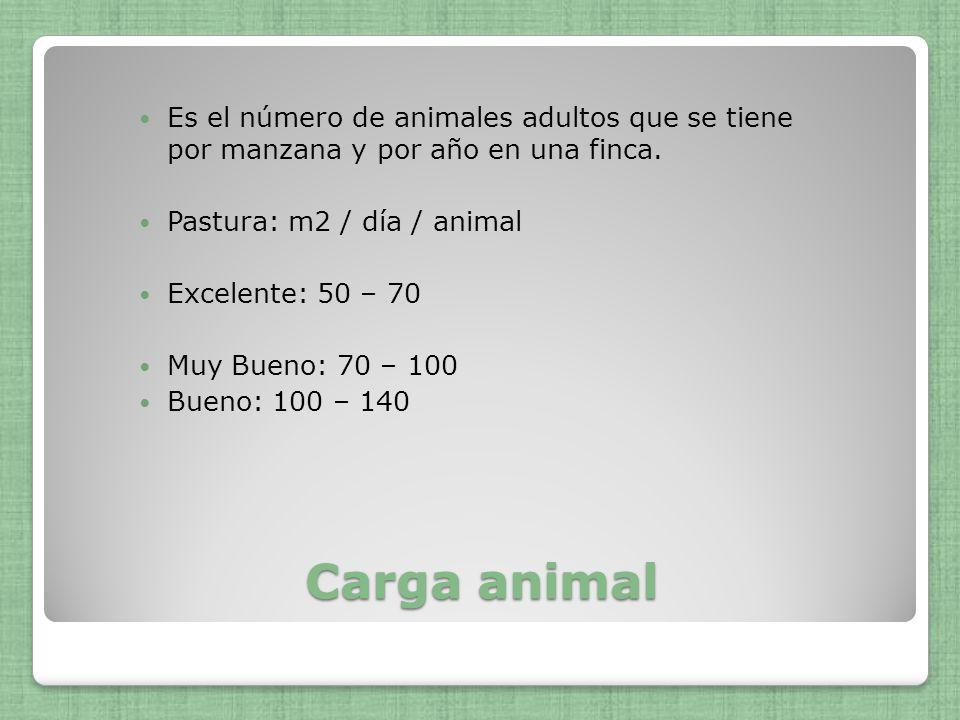 Es el número de animales adultos que se tiene por manzana y por año en una finca.