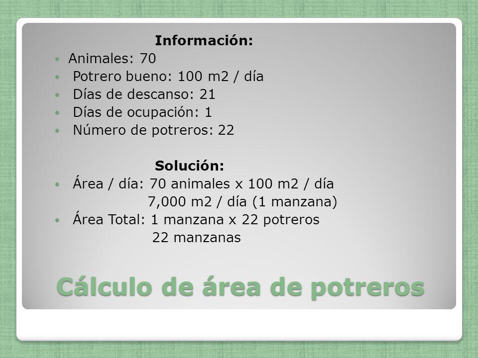 Cálculo de área de potreros