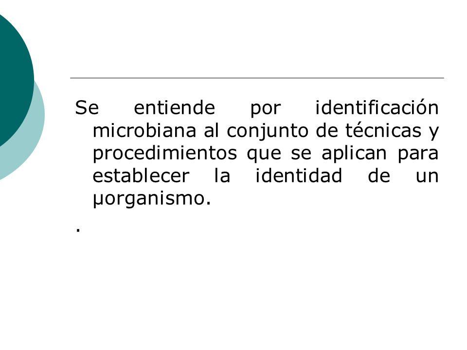 Se entiende por identificación microbiana al conjunto de técnicas y procedimientos que se aplican para establecer la identidad de un µorganismo.