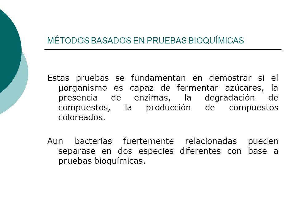 MÉTODOS BASADOS EN PRUEBAS BIOQUÍMICAS