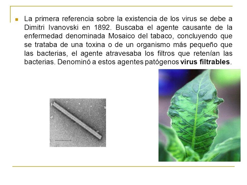 La primera referencia sobre la existencia de los virus se debe a Dimitri Ivanovski en 1892.