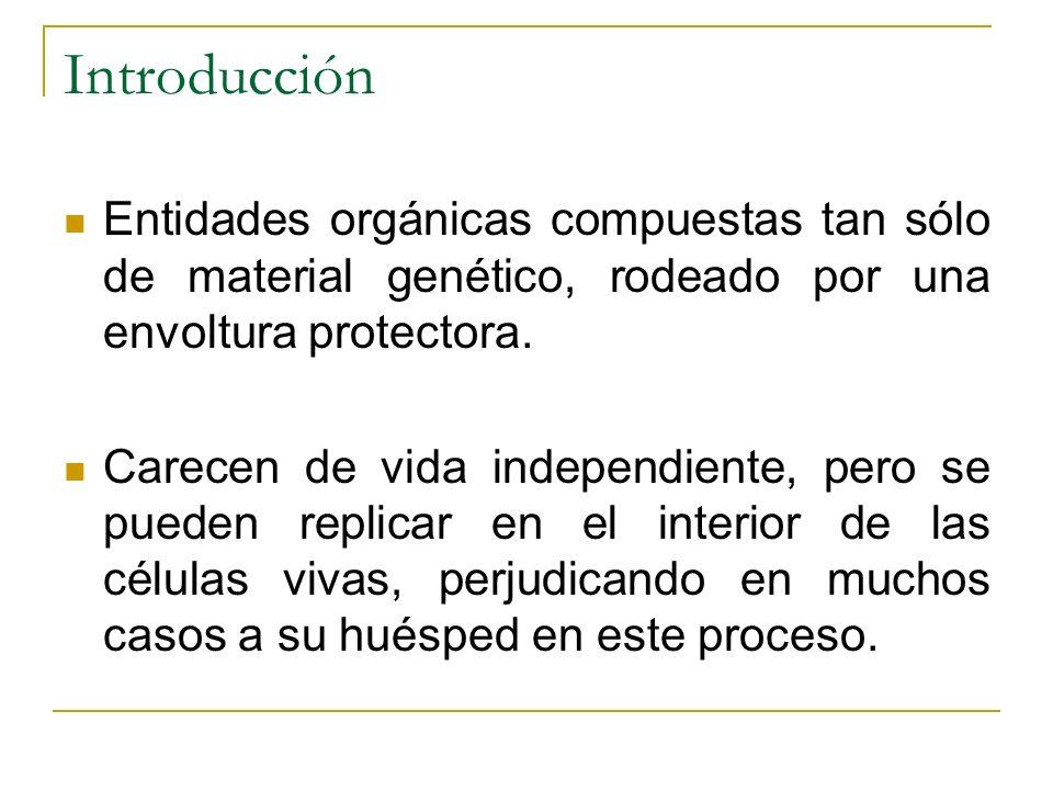 Introducción Entidades orgánicas compuestas tan sólo de material genético, rodeado por una envoltura protectora.