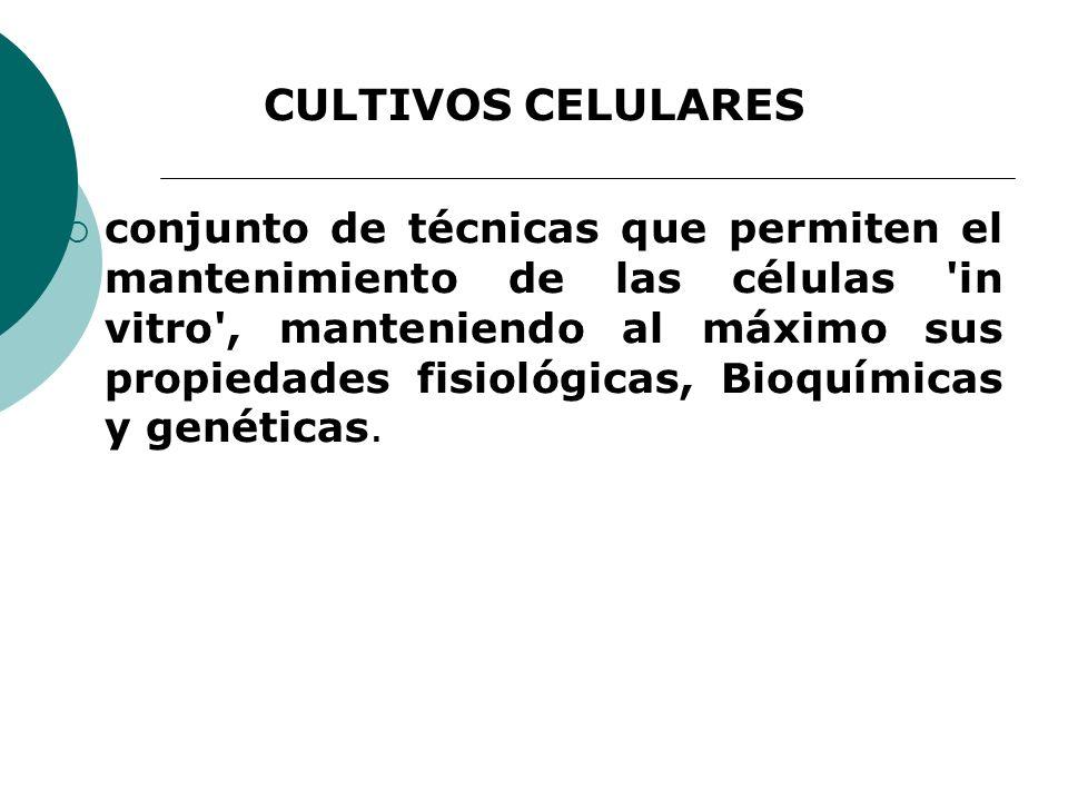 CULTIVOS CELULARES