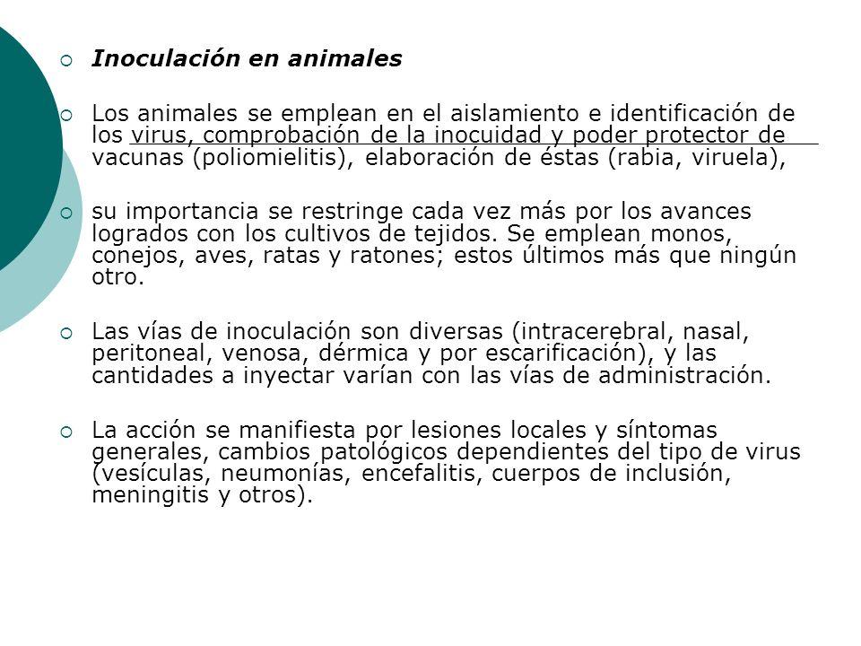 Inoculación en animales