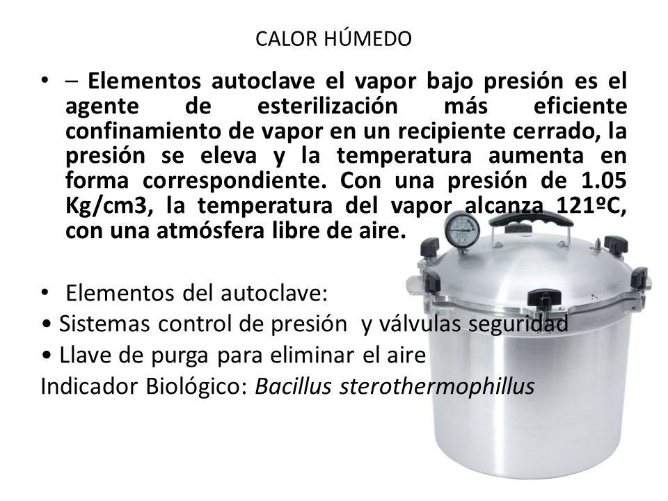 Elementos del autoclave: