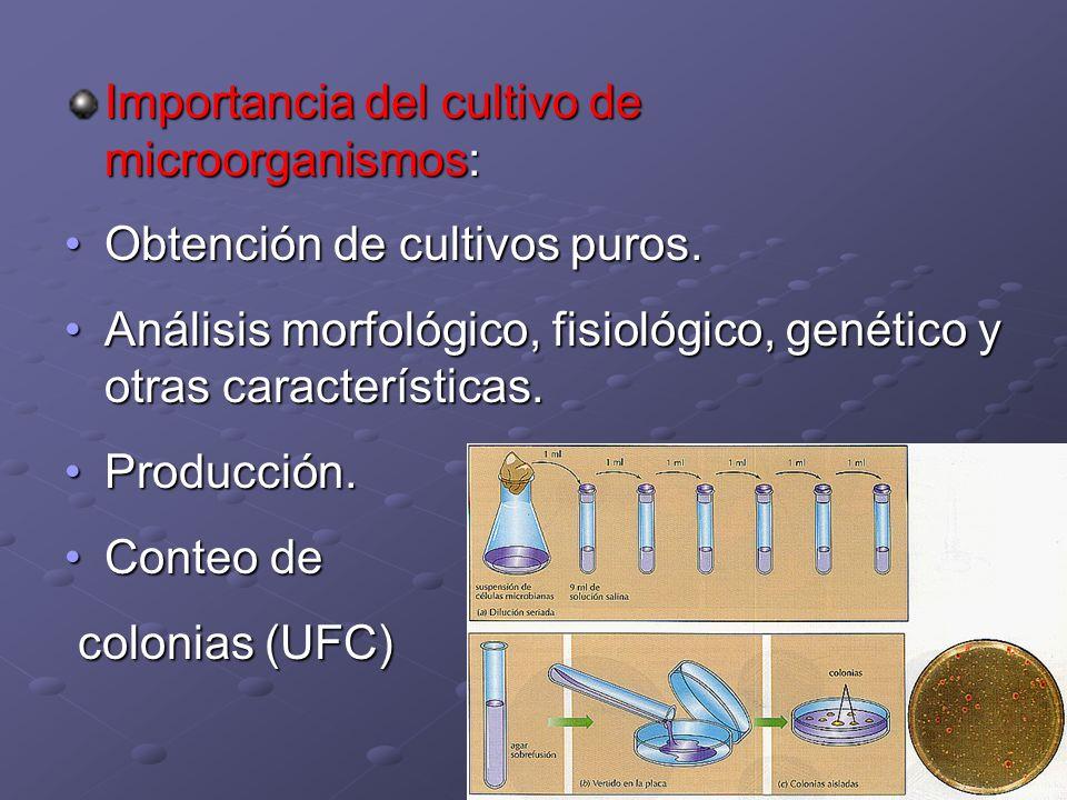 Importancia del cultivo de microorganismos:
