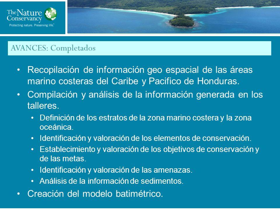 Compilación y análisis de la información generada en los talleres.
