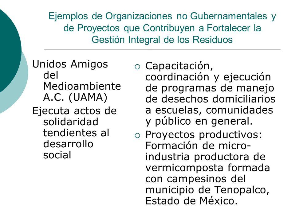 Unidos Amigos del Medioambiente A.C. (UAMA)