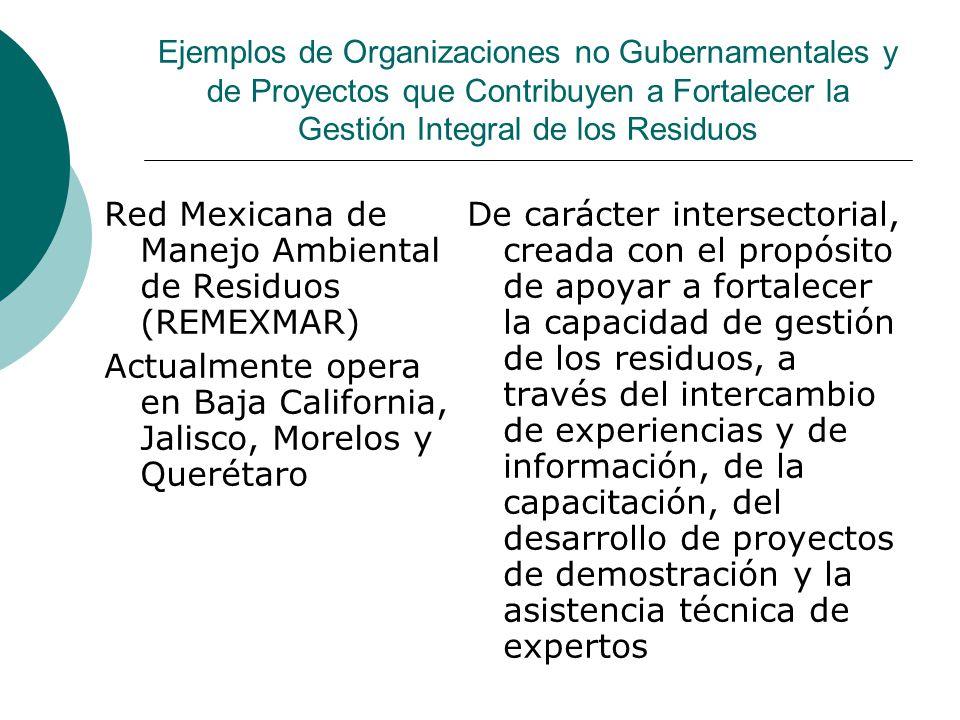 Red Mexicana de Manejo Ambiental de Residuos (REMEXMAR)