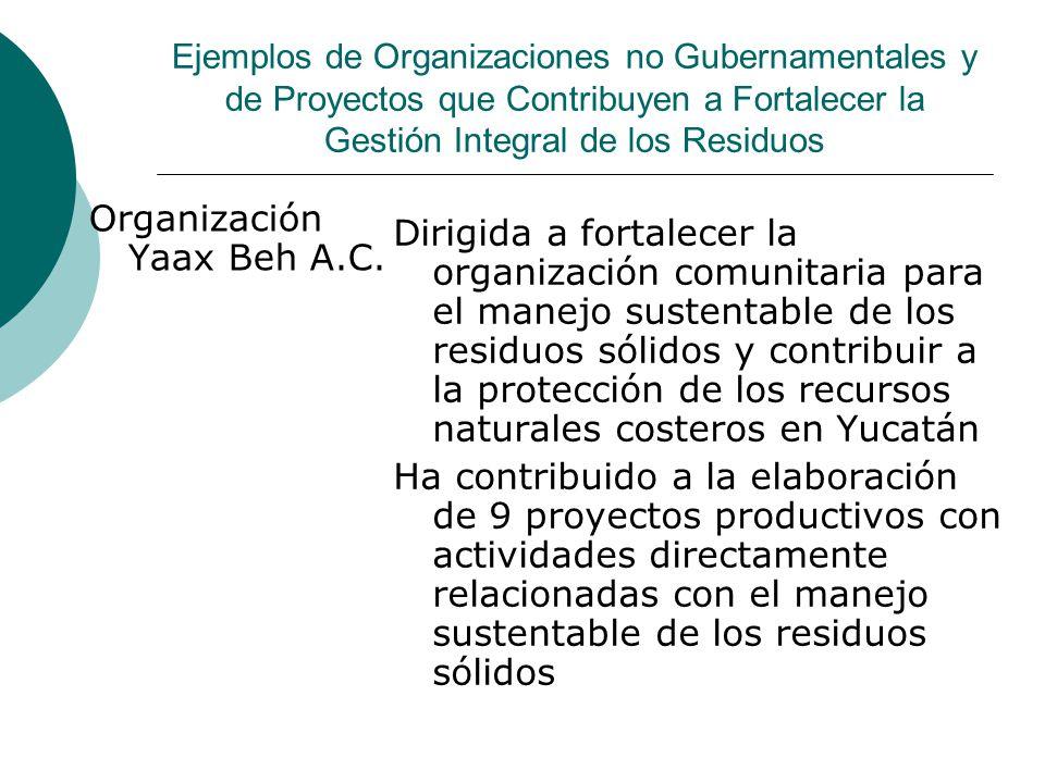 Organización Yaax Beh A.C.