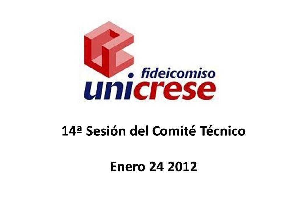 14ª Sesión del Comité Técnico Enero 24 2012