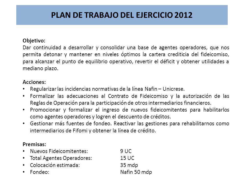 PLAN DE TRABAJO DEL EJERCICIO 2012
