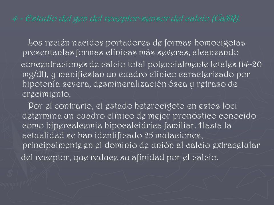4 - Estudio del gen del receptor-sensor del calcio (CaSR).