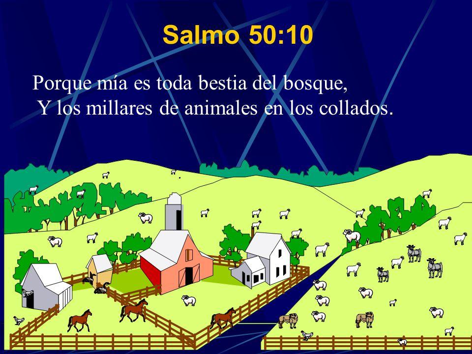 Salmo 50:10 Porque mía es toda bestia del bosque, Y los millares de animales en los collados.