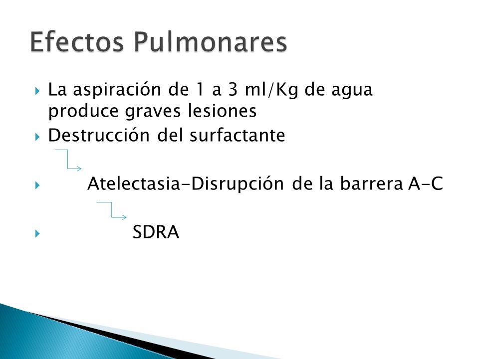 Efectos Pulmonares La aspiración de 1 a 3 ml/Kg de agua produce graves lesiones. Destrucción del surfactante.