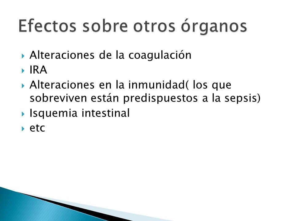 Efectos sobre otros órganos