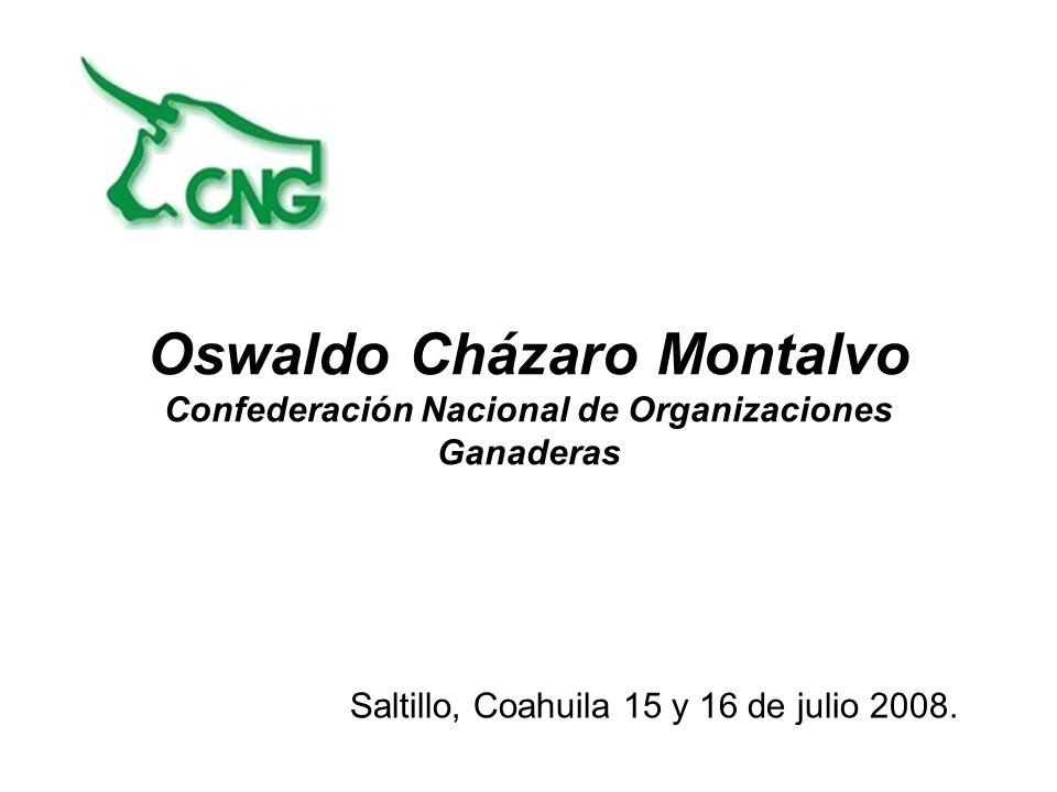 Saltillo, Coahuila 15 y 16 de julio 2008.
