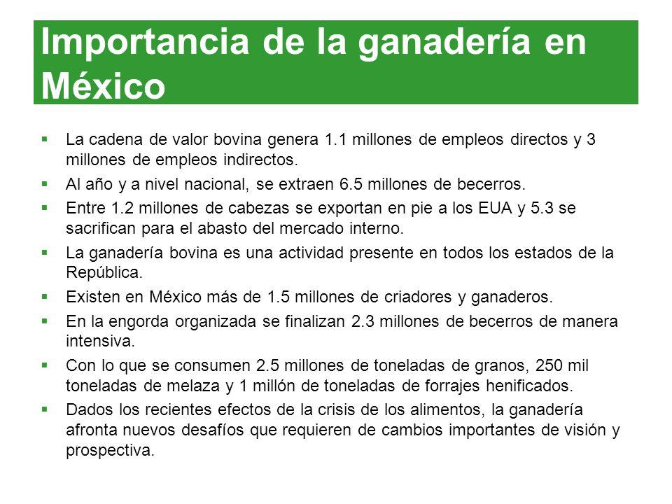 Importancia de la ganadería en México