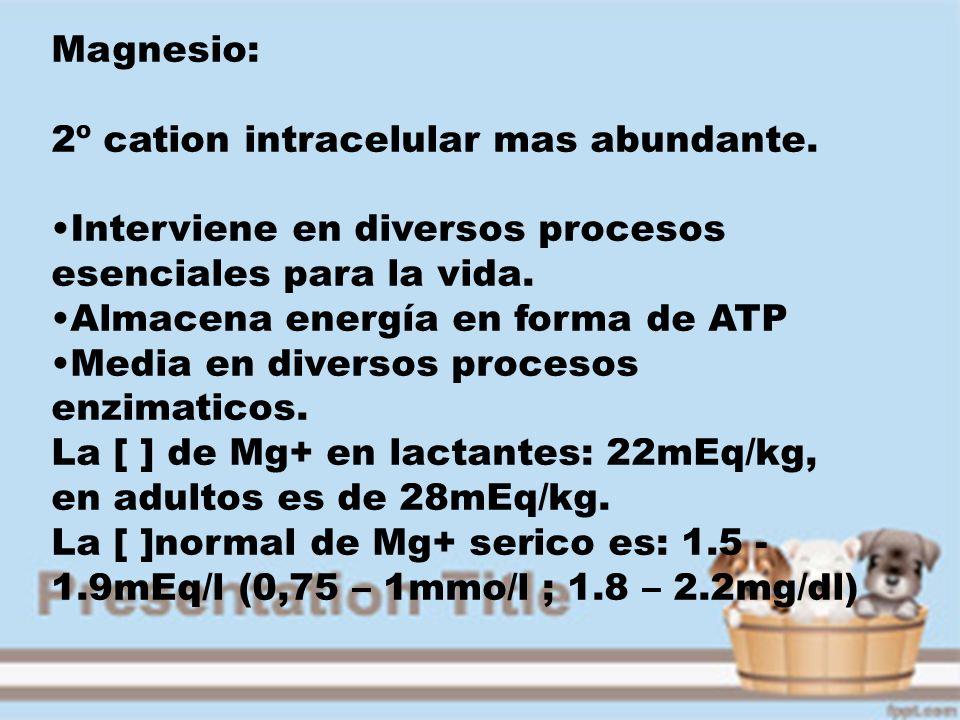 Magnesio: 2º cation intracelular mas abundante. Interviene en diversos procesos esenciales para la vida.