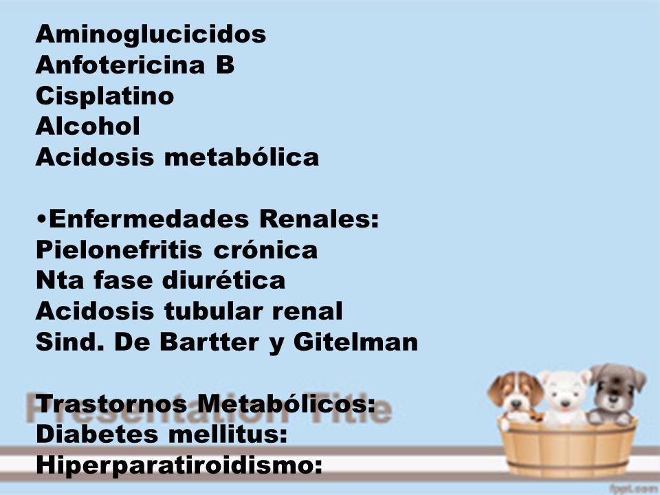 Aminoglucicidos Anfotericina B. Cisplatino. Alcohol. Acidosis metabólica. Enfermedades Renales: